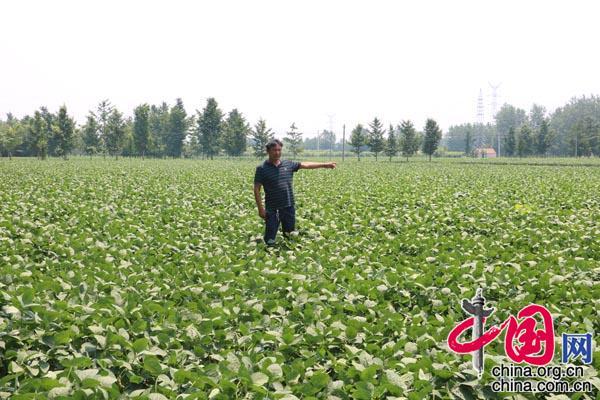 刘学成:从小青菜贩子到年销售达2亿元的蔬菜大王演变